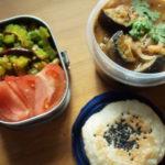 ダル豆と茄子のカレー弁当
