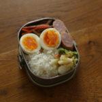 豚入り金平牛蒡弁当